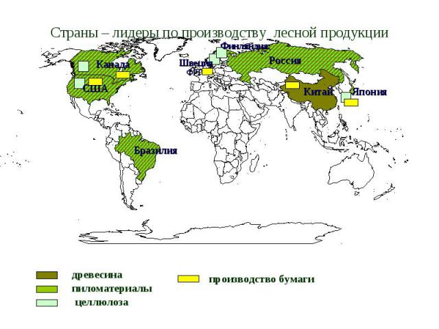 Страны – лидеры по производству лесной продукции древесина пиломатериалы целлюлоза производство бумаги Россия США Канада Бразилия Китай Финляндия Япония Швеция ФРГ