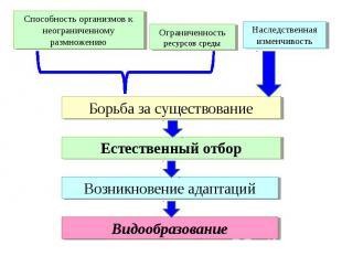Способность организмов к неограниченному размножению Ограниченность ресурсов сре