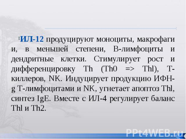 ИЛ-12 продуцируют моноциты, макрофаги и, в меньшей степени, В-лимфоциты и дендритные клетки. Стимулирует рост и дифференцировку Th (Th0 => Thl), Т-киллеров, NK. Индуцирует продукцию ИФН-g Т-лимфоцитами и NK, угнетает апоптоз Thl, синтез IgE. Вместе …