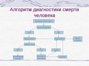Алгоритм диагностики смерти человека Признаки смерти мозга Кровообращение есть н