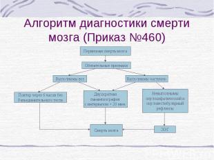 Алгоритм диагностики смерти мозга (Приказ №460) Первичная смерть мозга Обязатель