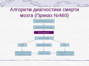 Алгоритм диагностики смерти мозга (Приказ №460) Вторичная смерть мозга Обязатель