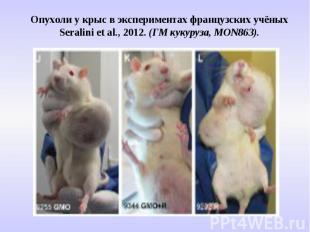 Опухоли у крыс в экспериментах французских учёных Seralini et al., 2012. (ГМ кук