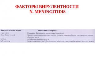 ФАКТОРЫ ВИРУЛЕНТНОСТИ N. MENINGITIDIS