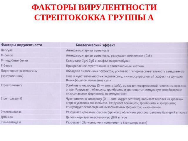 ФАКТОРЫ ВИРУЛЕНТНОСТИ СТРЕПТОКОККА ГРУППЫ А