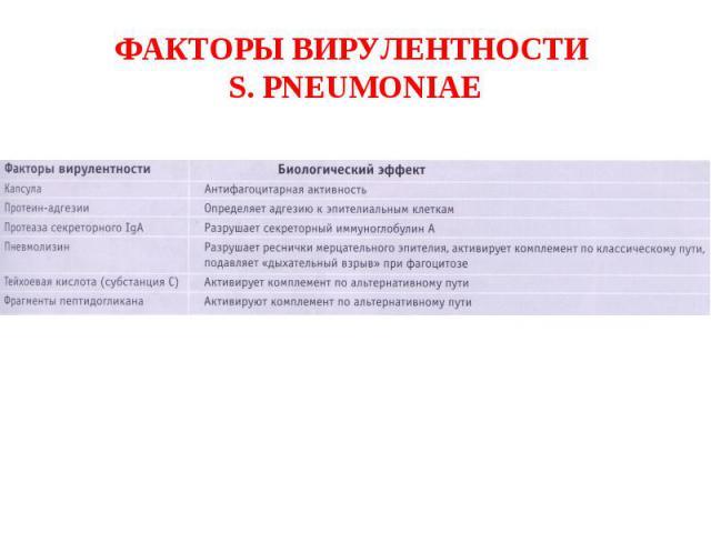 ФАКТОРЫ ВИРУЛЕНТНОСТИ S. PNEUMONIAE