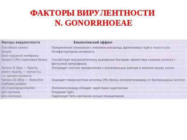 ФАКТОРЫ ВИРУЛЕНТНОСТИ N. GONORRHOEAE