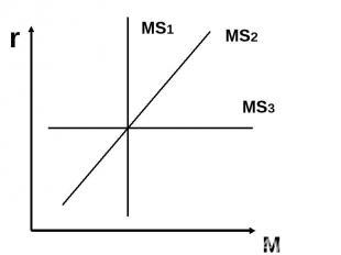 r M MS2 MS1 MS3