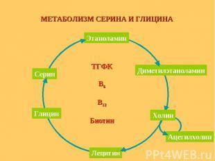 ТГФК В6 В12 Биотин МЕТАБОЛИЗМ СЕРИНА И ГЛИЦИНА Этаноламин Серин Глицин Лецитин Д