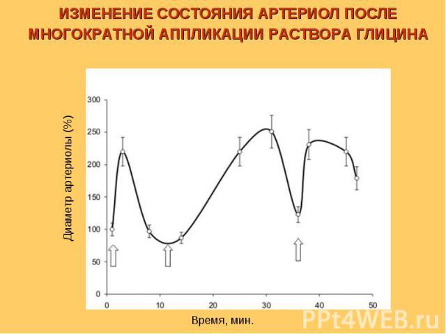 Время, мин. Диаметр артериолы (%) ИЗМЕНЕНИЕ СОСТОЯНИЯ АРТЕРИОЛ ПОСЛЕ МНОГОКРАТНОЙ АППЛИКАЦИИ РАСТВОРА ГЛИЦИНА