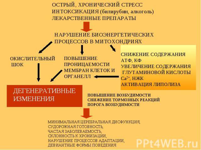 ОСТРЫЙ, ХРОНИЧЕСКИЙ СТРЕСС ИНТОКСИКАЦИЯ (билирубин, алкоголь) ЛЕКАРСТВЕННЫЕ ПРЕПАРАТЫ НАРУШЕНИЕ БИОЭНЕРГЕТИЧЕСКИХ ПРОЦЕССОВ В МИТОХОНДРИЯХ ОКИСЛИТЕЛЬНЫЙ ШОК ПОВЫШЕНИЕ ПРОНИЦАЕМОСТИ МЕМБРАН КЛЕТОК И ОРГАНЕЛЛ СНИЖЕНИЕ СОДЕРЖАНИЯ АТФ, КФ УВЕЛИЧЕНИЕ СОД…