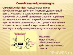 Дневное отделение фармацевтического факультета Семейства нейропептидов Опиоидные
