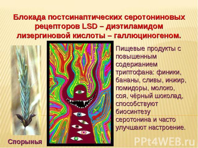 Дневное отделение фармацевтического факультета Блокада постсинаптических серотониновых рецепторов LSD – диэтиламидом лизергиновой кислоты – галлюциногеном. Спорынья Пищевые продукты с повышенным содержанием триптофана: финики, бананы, сливы, инжир, …