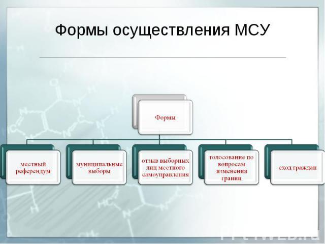Формы осуществления МСУ