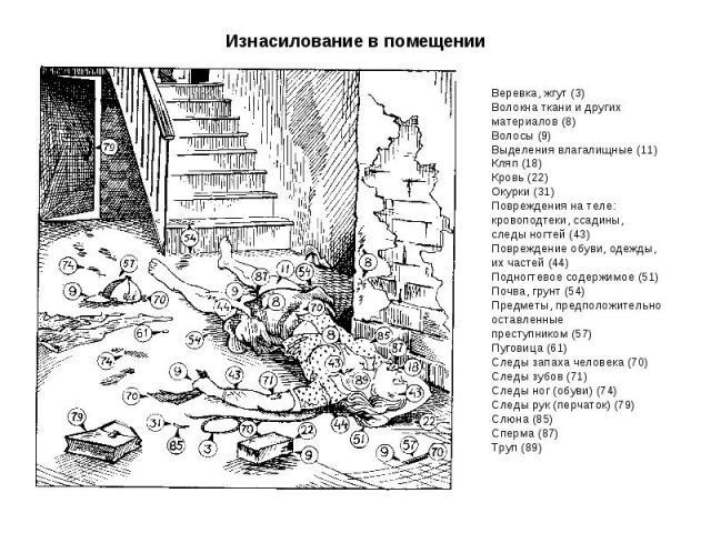 Веревка, жгут (3) Волокна ткани и других материалов (8) Волосы (9) Выделения влагалищные (11) Кляп (18) Кровь (22) Окурки (31) Повреждения на теле: кровоподтеки, ссадины, следы ногтей (43) Повреждение обуви, одежды, их частей (44) Подногтевое содерж…