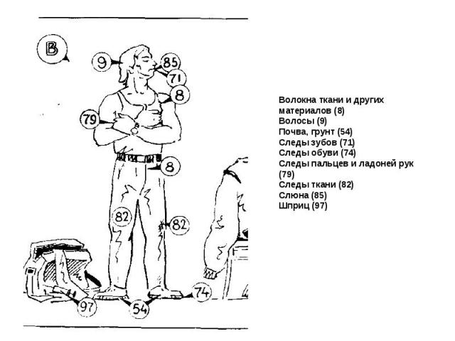 Волокна ткани и других материалов (8) Волосы (9) Почва, грунт (54) Следы зубов (71) Следы обуви (74) Следы пальцев и ладоней рук (79) Следы ткани (82) Слюна (85) Шприц (97)
