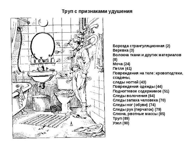 Борозда странгуляционная (2) Веревка (3) Волокна ткани и других материалов (8) Моча (24) Петля (41) Повреждения на теле: кровоподтеки, ссадины, следы ногтей (43) Повреждения одежды (44) Подногтевое содержимое (51) Следы волочения (64) Следы запаха ч…