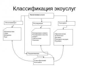 Экосистемные услуги Обеспечивающие Регулирующие Культурные Поддерживающие Продов