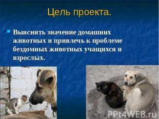 Выяснить значение домашних животных и привлечь к проблеме бездомных животных уча