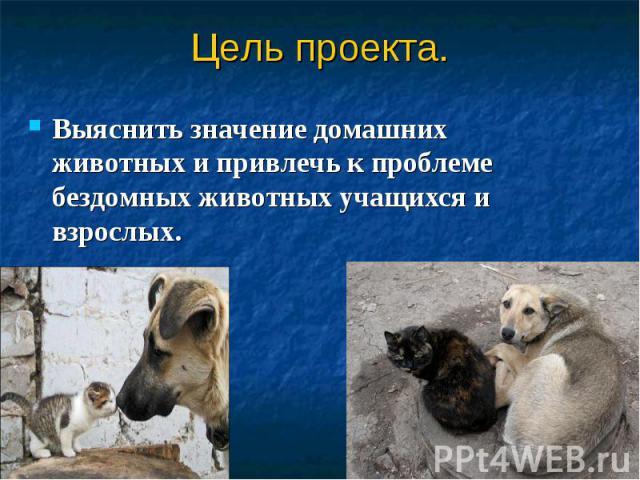 Выяснить значение домашних животных и привлечь к проблеме бездомных животных учащихся и взрослых. Цель проекта.