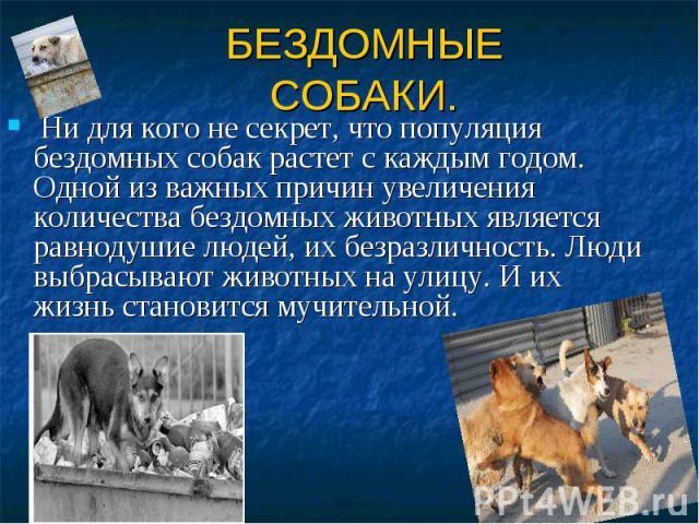 БЕЗДОМНЫЕ СОБАКИ. Ни для кого не секрет, что популяция бездомных собак растет с каждым годом. Одной из важных причин увеличения количества бездомных животных является равнодушие людей, их безразличность. Люди выбрасывают животных на улицу. И их жизн…