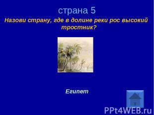 страна 5 Назови страну, где в долине реки рос высокий тростник? Египет