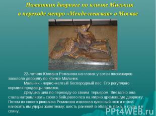 Памятник дворняге по кличке Мальчик в переходе метро «Менделеевская» в Москве 22