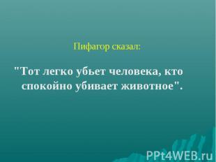 """Пифагор сказал: \""""Тот легко убьет человека, кто спокойно убивает животное\""""."""