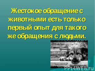 Жестокое обращение с животными есть только первый опыт для такого же обращения с