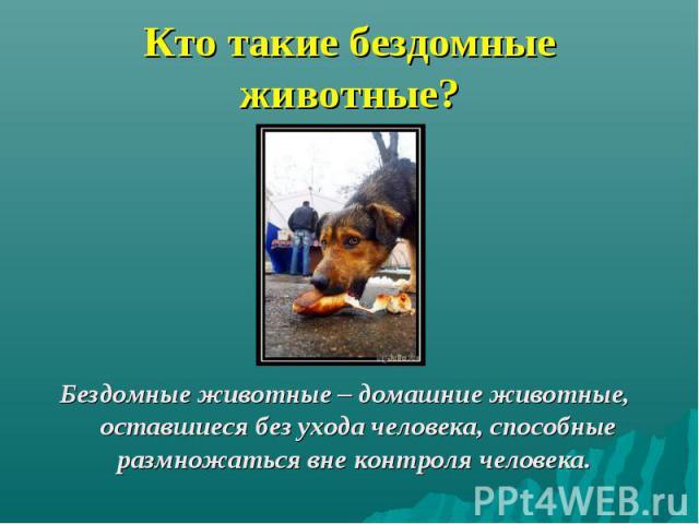 Кто такие бездомные животные? Бездомные животные – домашние животные, оставшиеся без ухода человека, способные размножаться вне контроля человека.