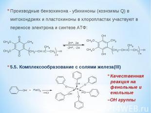 Производные бензохинона - убихиноны (коэнзимы Q) в митохондриях и пластохиноны в