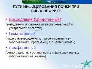 ПУТИ ИНФИЦИРОВАНИЯ ПОЧКИ ПРИ ПИЕЛОНЕФРИТЕ Восходящий (уриногенный) (возбудители