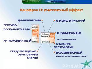 Канефрон Н: комплексный эффект ДИУРЕТИЧЕСКИЙ • • АНТИМИКРОБНЫЙ • СПАЗМОЛИТИЧЕСКИ