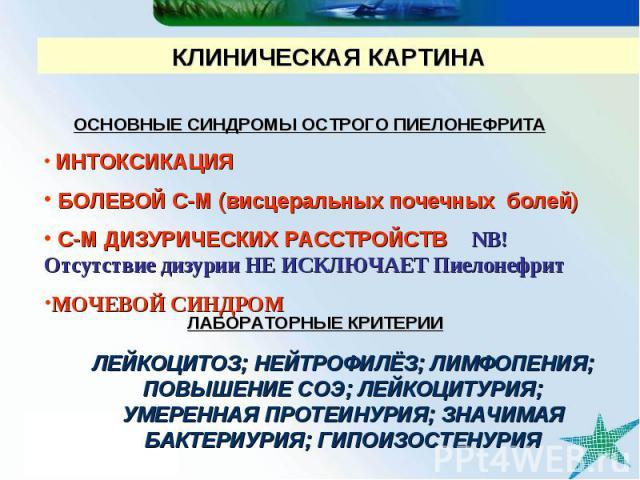 КЛИНИЧЕСКАЯ КАРТИНА ОСНОВНЫЕ СИНДРОМЫ ОСТРОГО ПИЕЛОНЕФРИТА ИНТОКСИКАЦИЯ БОЛЕВОЙ С-М (висцеральных почечных болей) С-М ДИЗУРИЧЕСКИХ РАССТРОЙСТВ NB! Отсутствие дизурии НЕ ИСКЛЮЧАЕТ Пиелонефрит МОЧЕВОЙ СИНДРОМ ЛАБОРАТОРНЫЕ КРИТЕРИИ ЛЕЙКОЦИТОЗ; НЕЙТРОФИ…