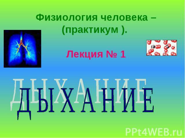 Физиология человека – (практикум ). Лекция № 1