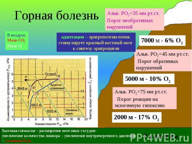 2000 м - 17% О2 5000 м - 10% О2 7000 м - 6% О2 Альв. РО2=35 мм рт.ст. Порог необратимых нарушений Альв. РО2=45 мм рт.ст. Порог обратимых нарушений Альв. РО2=75 мм рт.ст. Порог реакции на экзогенную гипоксию Р а в н и н а Горная болезнь Бытовая гипок…
