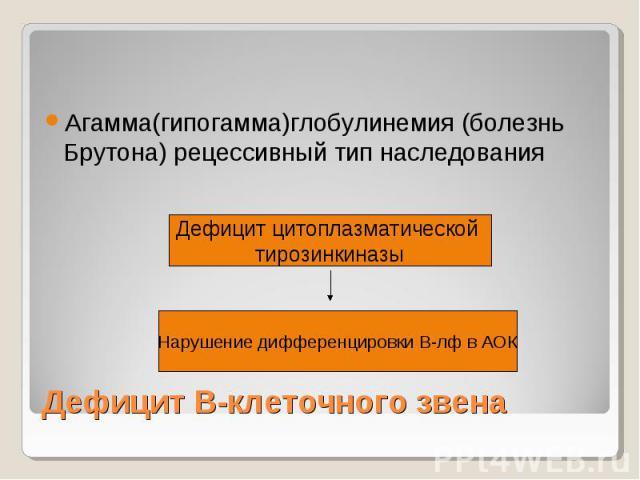 Дефицит В-клеточного звена Агамма(гипогамма)глобулинемия (болезнь Брутона) рецессивный тип наследования Дефицит цитоплазматической тирозинкиназы Нарушение дифференцировки В-лф в АОК
