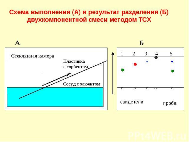 Схема выполнения (А) и результат разделения (Б) двухкомпонентной смеси методом ТСХ А Б Стеклянная камера Пластинка с сорбентом Сосуд с элюентом 1 2 3 4 5 свидетели проба