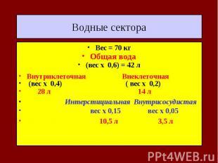 Водные сектора Вес = 70 кг Общая вода (вес х 0,6) = 42 л Внутриклеточная Внеклет