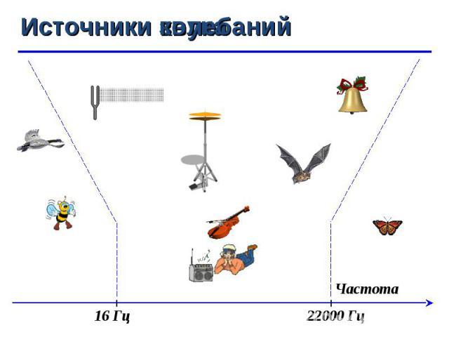 Частота 22000 Гц 16 Гц Источники звука Источники колебаний