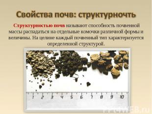 Структурностью почв называют способность почвенной массы распадаться на отдельны