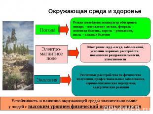 Окружающая среда и здоровье Погода Электро- магнитное поле Экология Резкие колеб