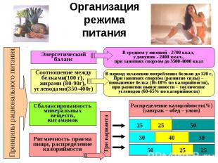 Организация режима питания Принципы рационального питания Энергетический баланс