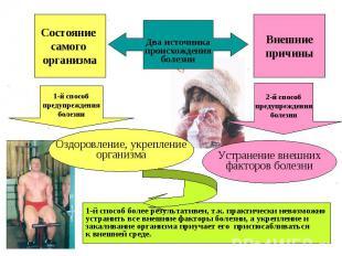 Состояние самого организма Внешние причины Два источника происхождения болезни 1