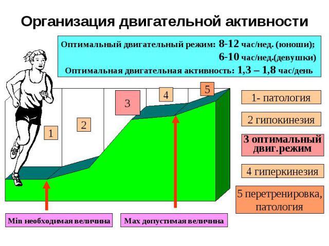 Организация двигательной активности 1 2 3 4 5 Min необходимая величина Max допустимая величина Оптимальный двигательный режим: 8-12 час/нед. (юноши); 6-10 час/нед.(девушки) Оптимальная двигательная активность: 1,3 – 1,8 час/день 1- патология 2 гипок…
