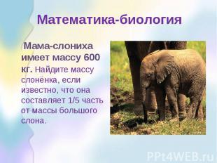 Математика-биология Мама-слониха имеет массу 600 кг. Найдите массу слонёнка, есл