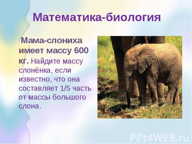 Математика-биология Мама-слониха имеет массу 600 кг. Найдите массу слонёнка, если известно, что она составляет 1/5 часть от массы большого слона.