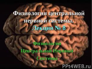 Физиология Центральной Нервной Системы Физиология центральной нервной системы. Л