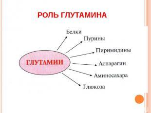 РОЛЬ ГЛУТАМИНА