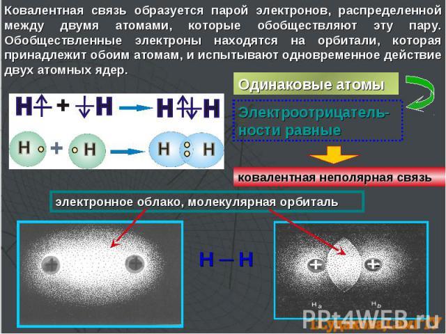 Ковалентная связь образуется парой электронов, распределенной между двумя атомами, которые обобществляют эту пару. Обобществленные электроны находятся на орбитали, которая принадлежит обоим атомам, и испытывают одновременное действие двух атомных яд…